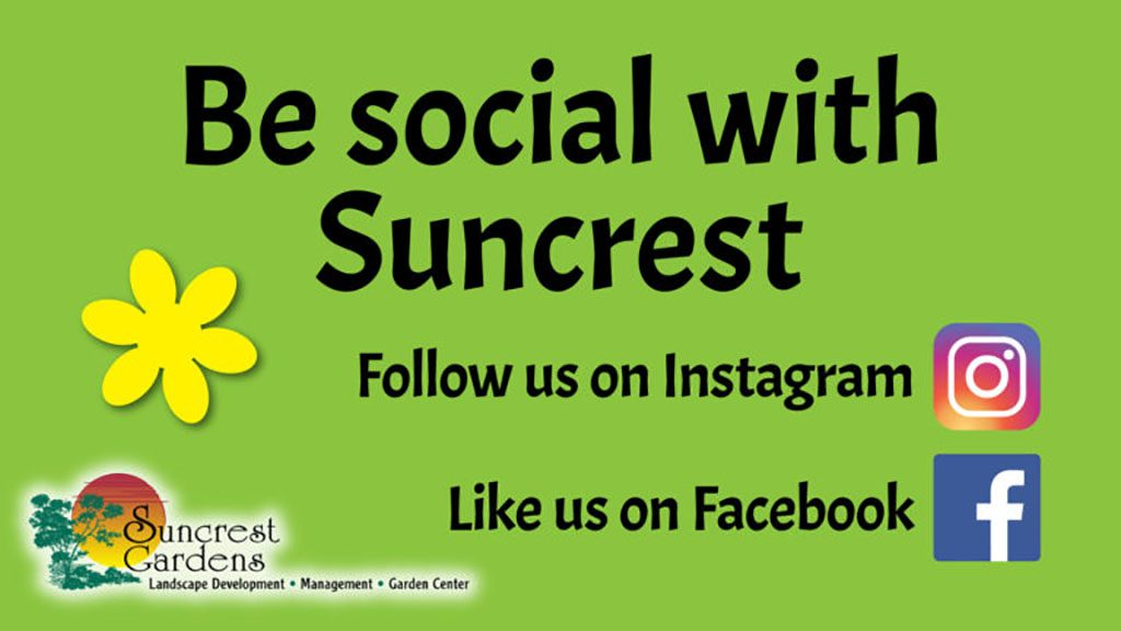 Be social with Suncrest